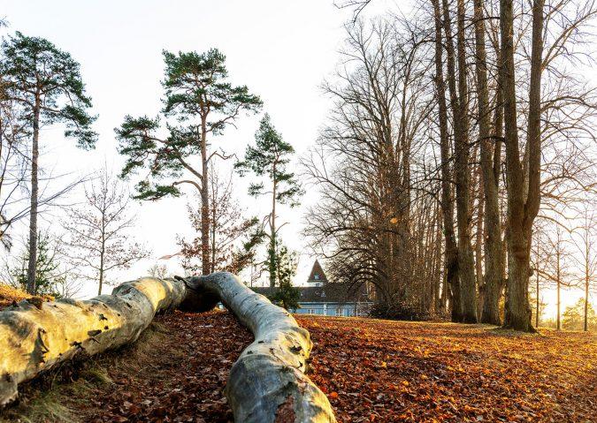 Nordre Skøyen hovedgård