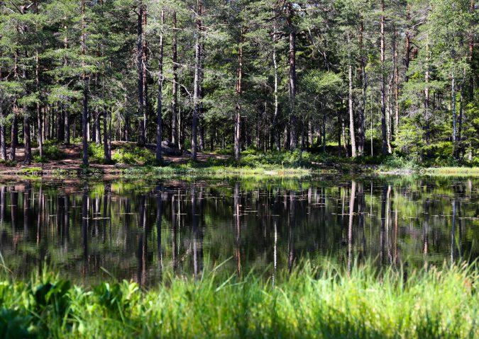 Nedre Blanksjø15