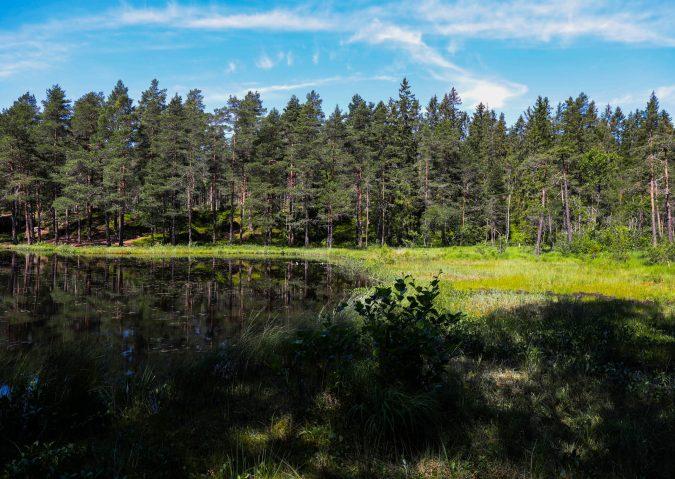Nedre Blanksjø5
